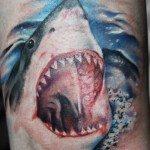 Tampa Tattoo Shop Vicious Angelz Tattoo 1