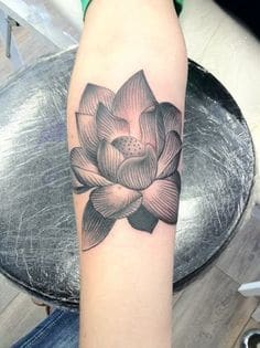 What Does Lotus Flower Tattoo Mean 45 Ideas And Designs