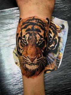 Tiger Tattoo 21