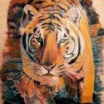 tiger-tattoo-41
