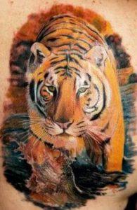Tiger Tattoo 41