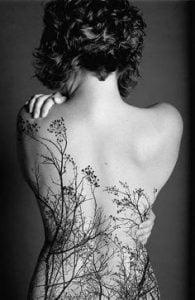 Tree Tattoo 3