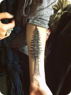 Tree Tattoo 41