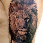 lion-tattoos-for-girls-29