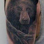 bear-tattoo-9