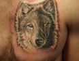 Anaheim Tattoo Artists Josh Palmer 1