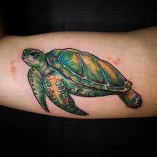 What Does Turtle Tattoo Mean Represent Symbolism