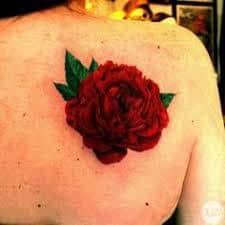 Carnation Tattoo 35