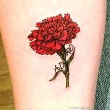Carnation Tattoo 43
