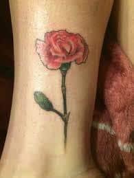 Carnation Tattoo 44