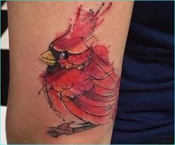 Cardinal Tattoo 20