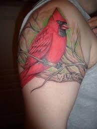 Cardinal Tattoo 42