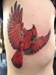 Cardinal Tattoo 49