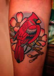 Cardinal Tattoo 8
