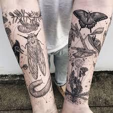 Cicada Tattoo 16