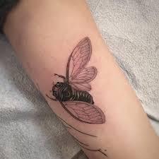 Cicada Tattoo 30
