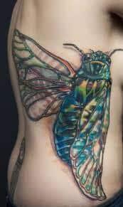 Cicada Tattoo 38