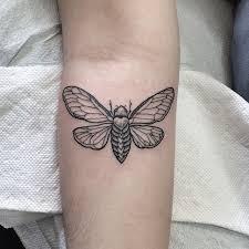 Cicada Tattoo 42