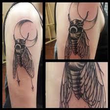 Cicada Tattoo 44