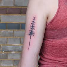 Pine Tree Tattoo (17) – Tattoo SEO