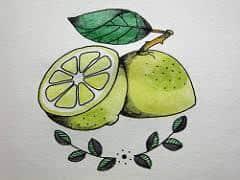 Lemon Tattoo 19
