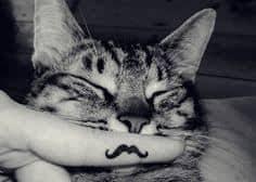 Mustache Tattoo 35