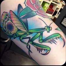 Praying Mantis Tattoo 22