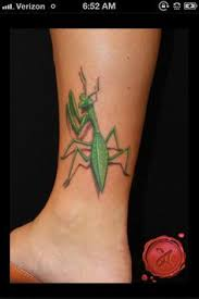 Praying Mantis Tattoo 57