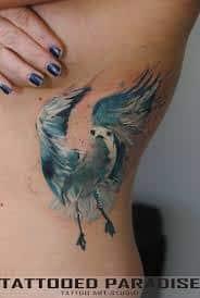 Seagull Tattoo 20