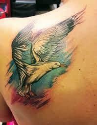 Seagull Tattoo 28