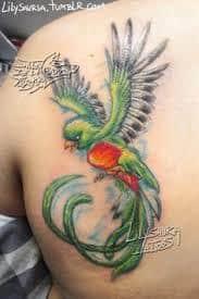 quetzal tattoo 14