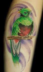 quetzal tattoo 16