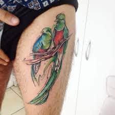 quetzal tattoo 5