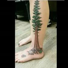 Redwood Tree Tattoo Meaning 45 Ideas And Designs