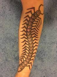 Centipede Tattoo 19