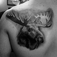 Moose Tattoo Meaning 29