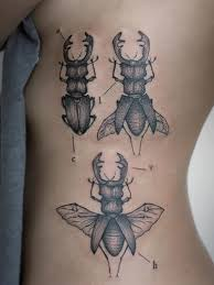 Insect Tattoo Meaning 40